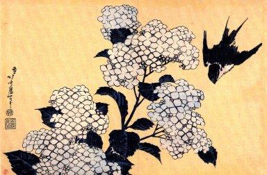 あじさいに燕(葛飾北斎・画)Hydrangea_and_Swallow_2.jpg