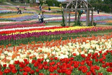 国営明石海峡公園(2007年4月).jpg