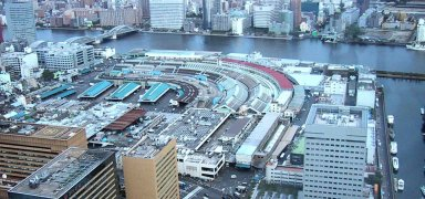 築地市場Tsukiji_as_seen_from_Shiodome.jpg